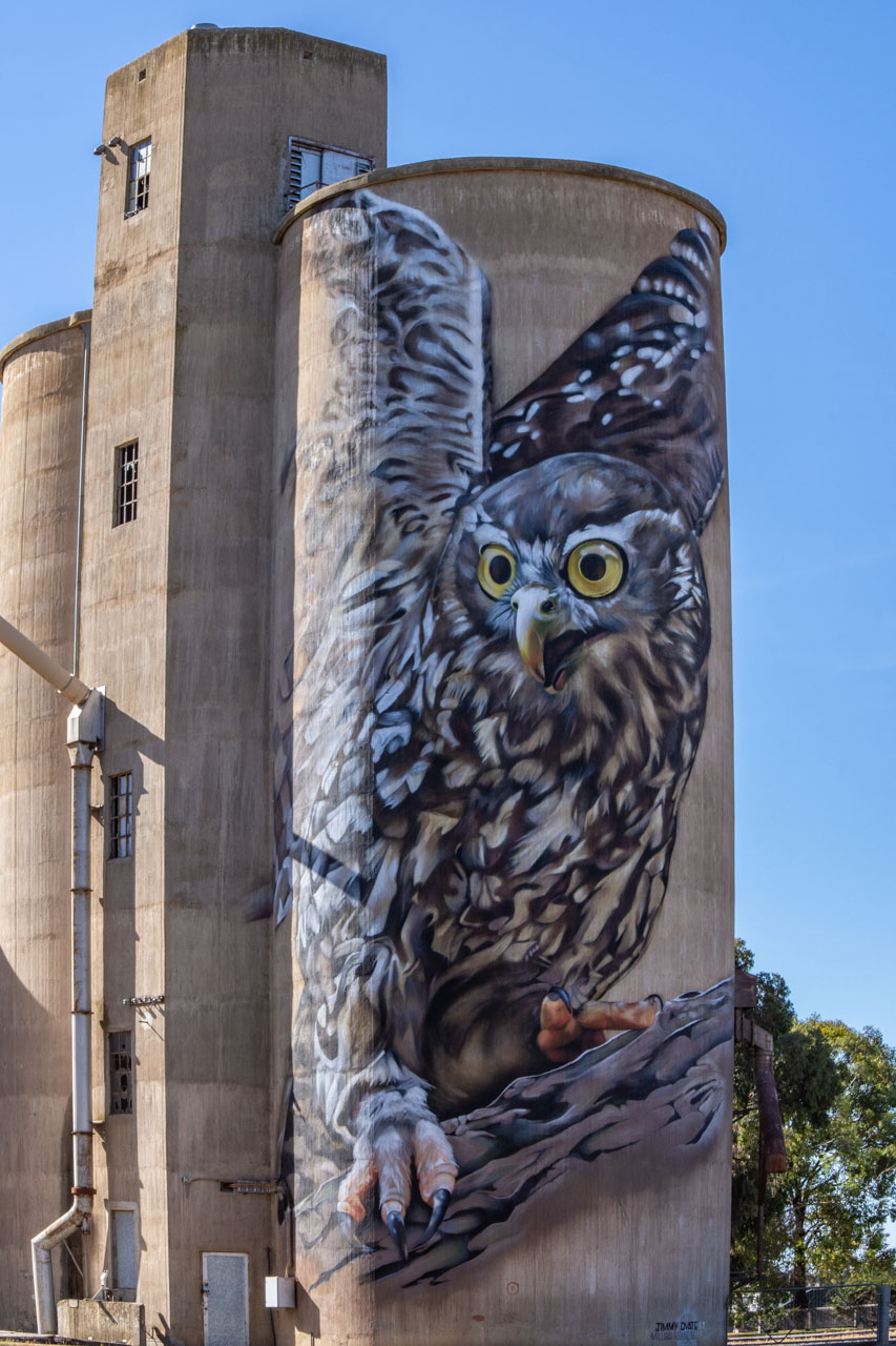 Silo art owl Goorambat north east Victoria