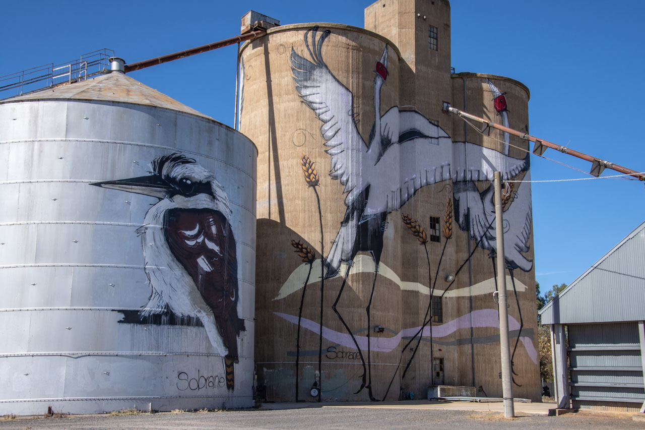 Silo art at Tungamah north east Victoria