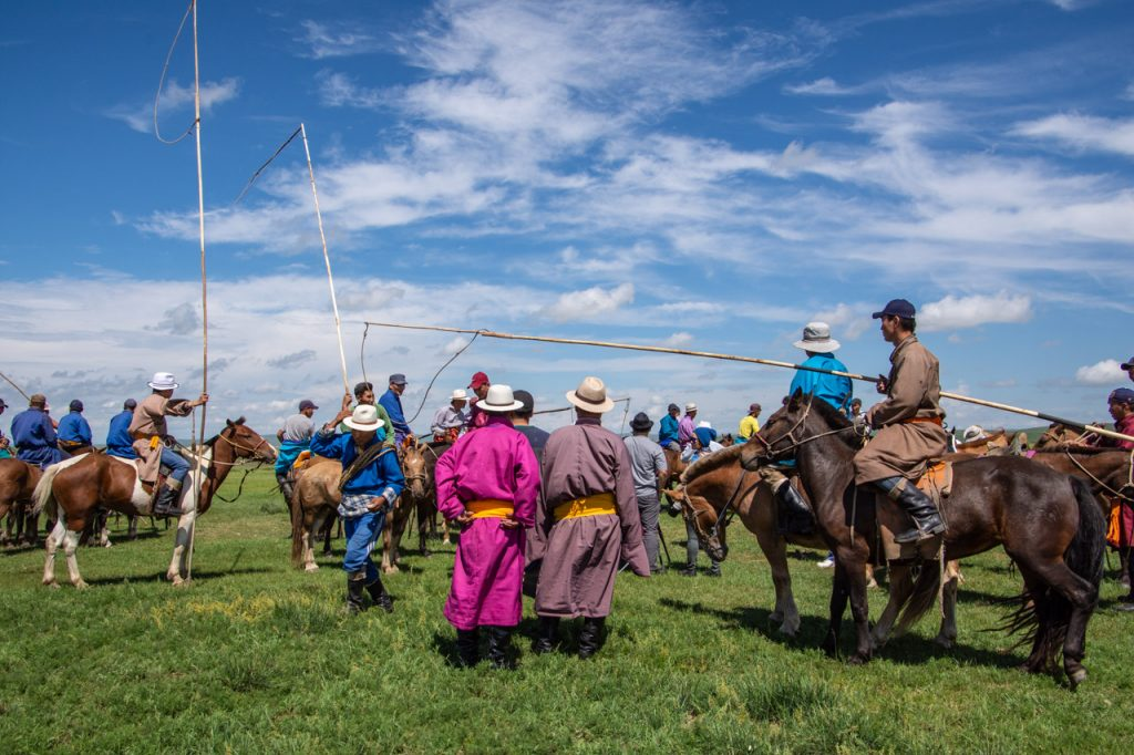 Men and horses gather