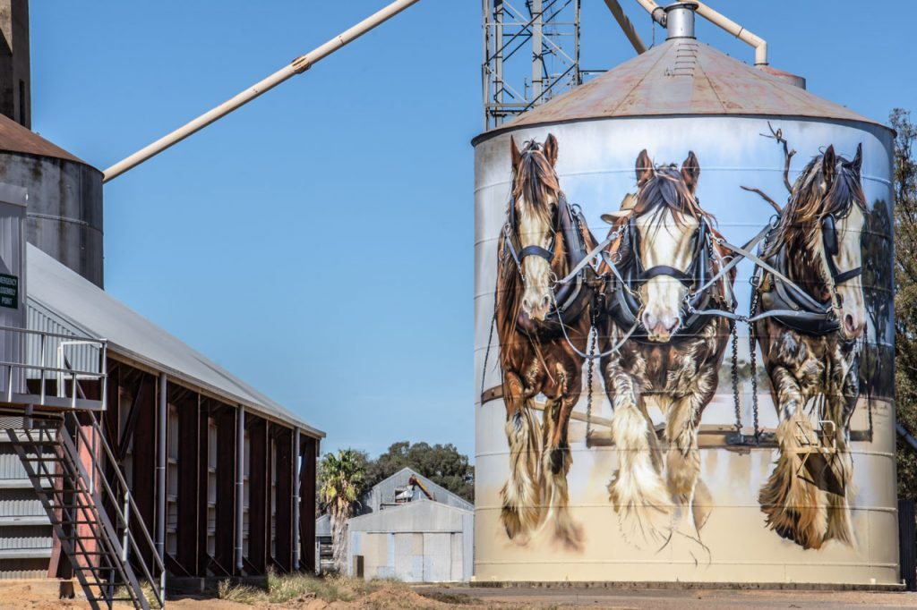Silo art at goorambat north east victoria