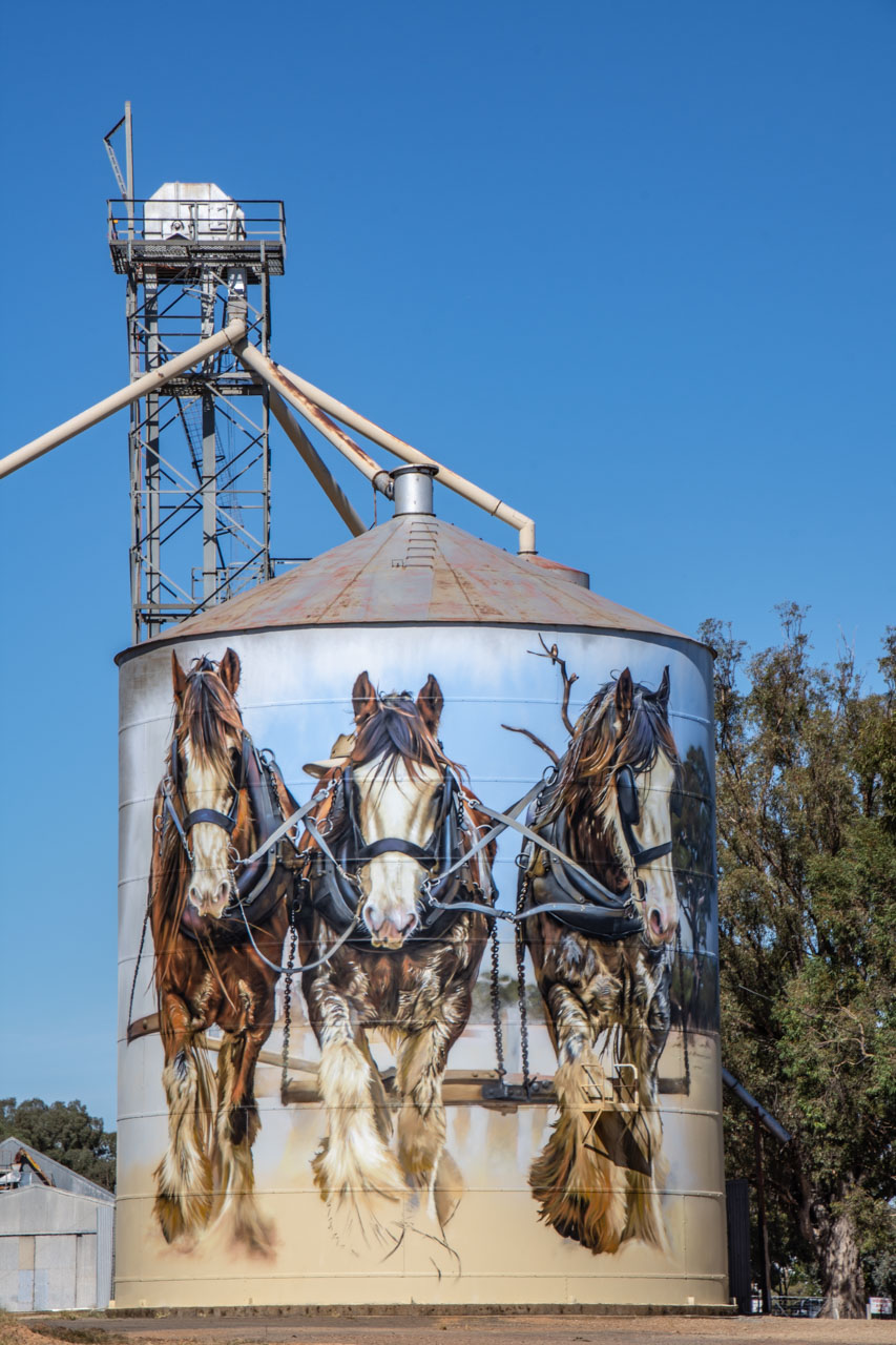 Silo art mural at Goorambat in north east Victoria