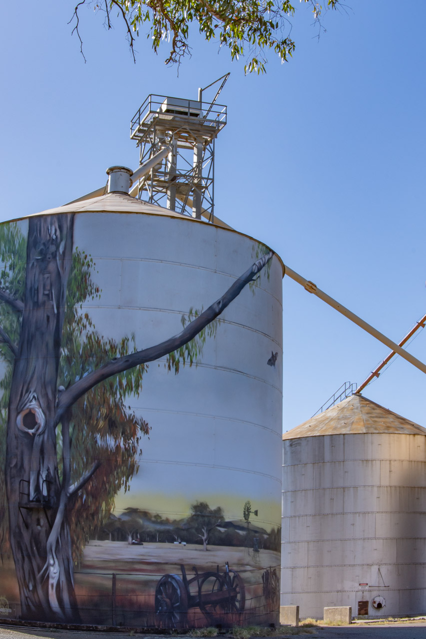Silo art mural at Goorambat in north east Victoria
