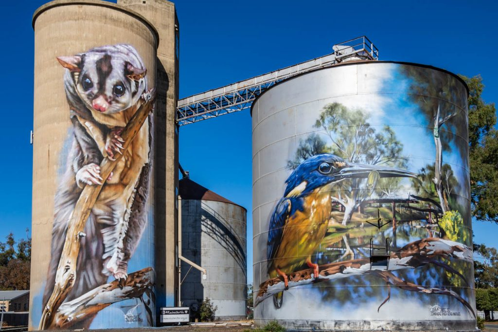 Squirrel Glider and Azure Kingfisher painted on grain silos at Rochester, Victoria