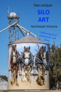 Clydesdale horses painted on metal silo at Goorambat