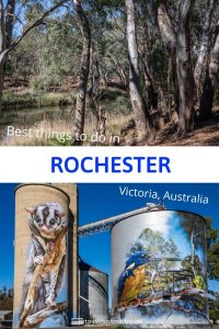 Rochester blog post PIN for Pinterest