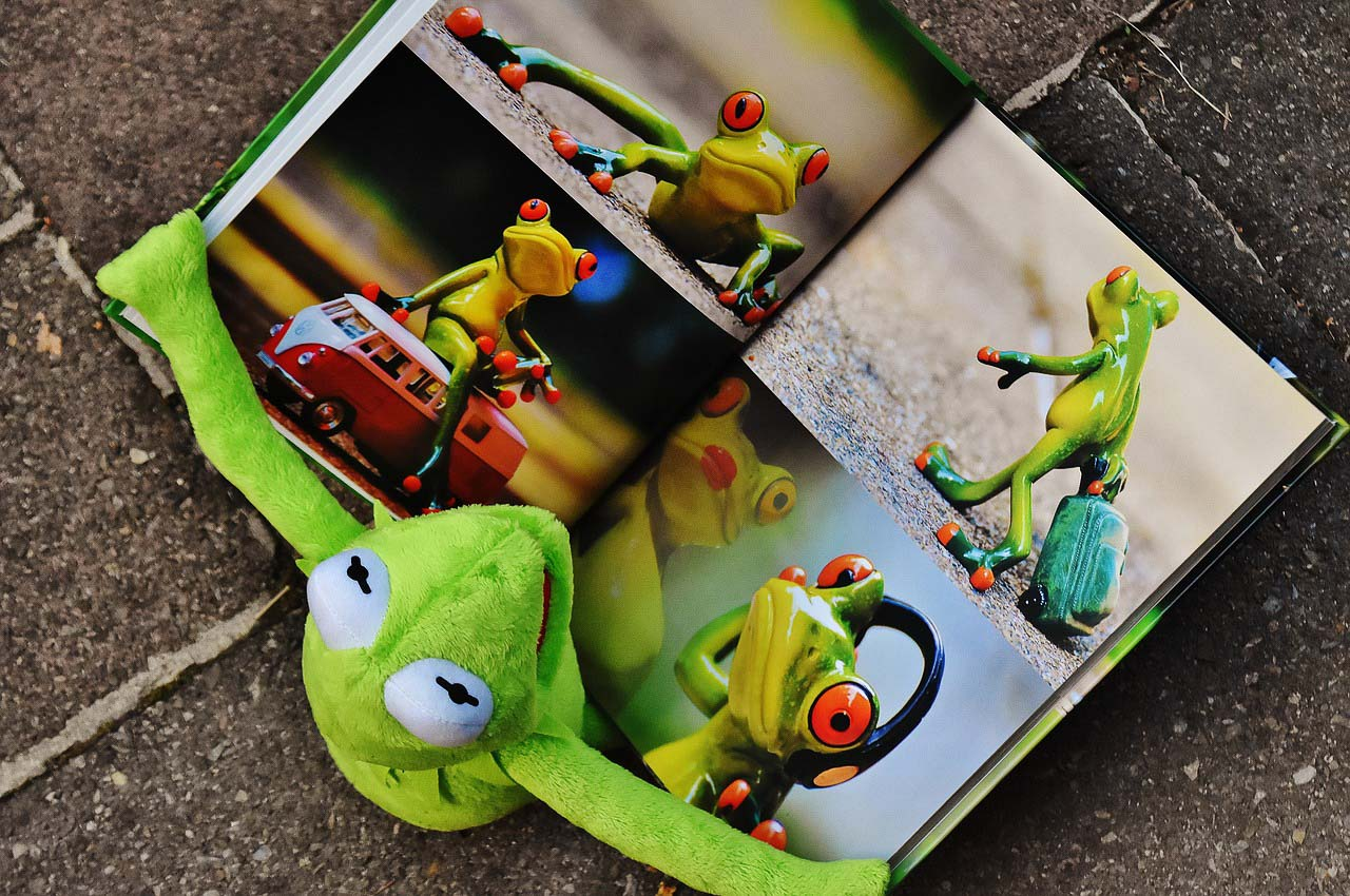 A soft toy green frog reading a book of photographs