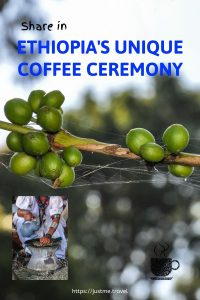 Coffee cherries on a branch and a lady washing coffee beans