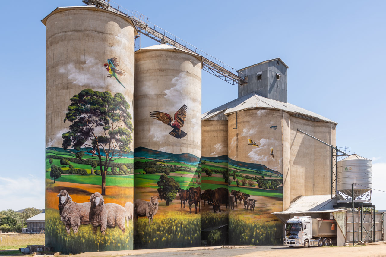 A landscape painting on grain silos of sheep, cattle and native birds. The painting has a mountain range in the background. A truck is receiving grain.