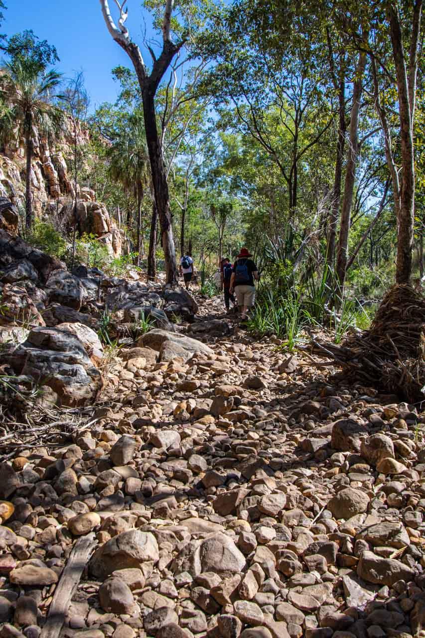 People walking on a path of small rocks through bush