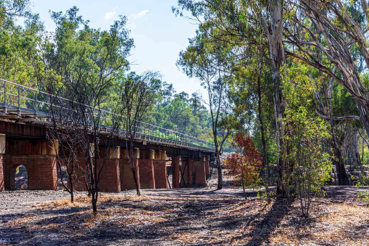 A photo of a rail bridge on brick arches surrounded by Australian native trees